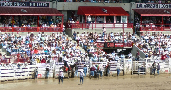 Cheyenne Rodeo Crowd