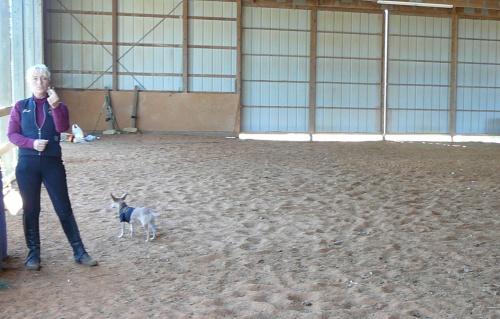 Arena Footing - Five Star Ranch