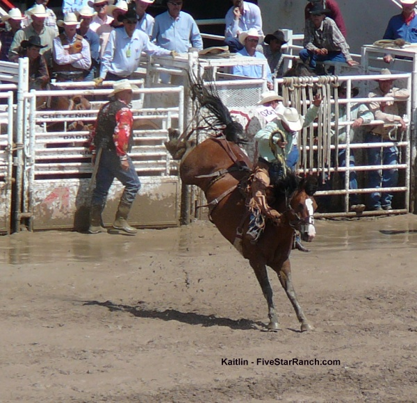 Bronc Riding at Cheyenne Frontier Days Rodeo
