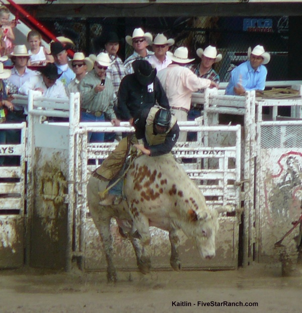 Cheyenne bull riding