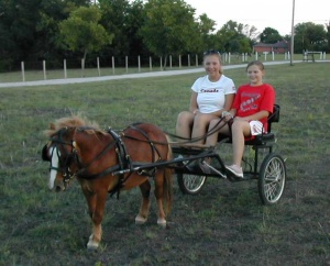 Kids with Pony Cart
