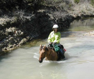 Swimming in a creek near Hill Country Equestrian Lodge near Bandera, TX