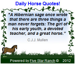 Larger Daily Horses Quote widget